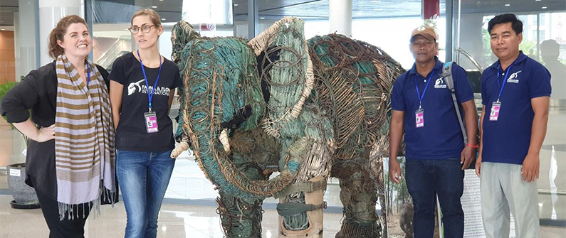A giant elephant made of snares collected in the Cardamoms draws attention to the huge problem of illegal poaching